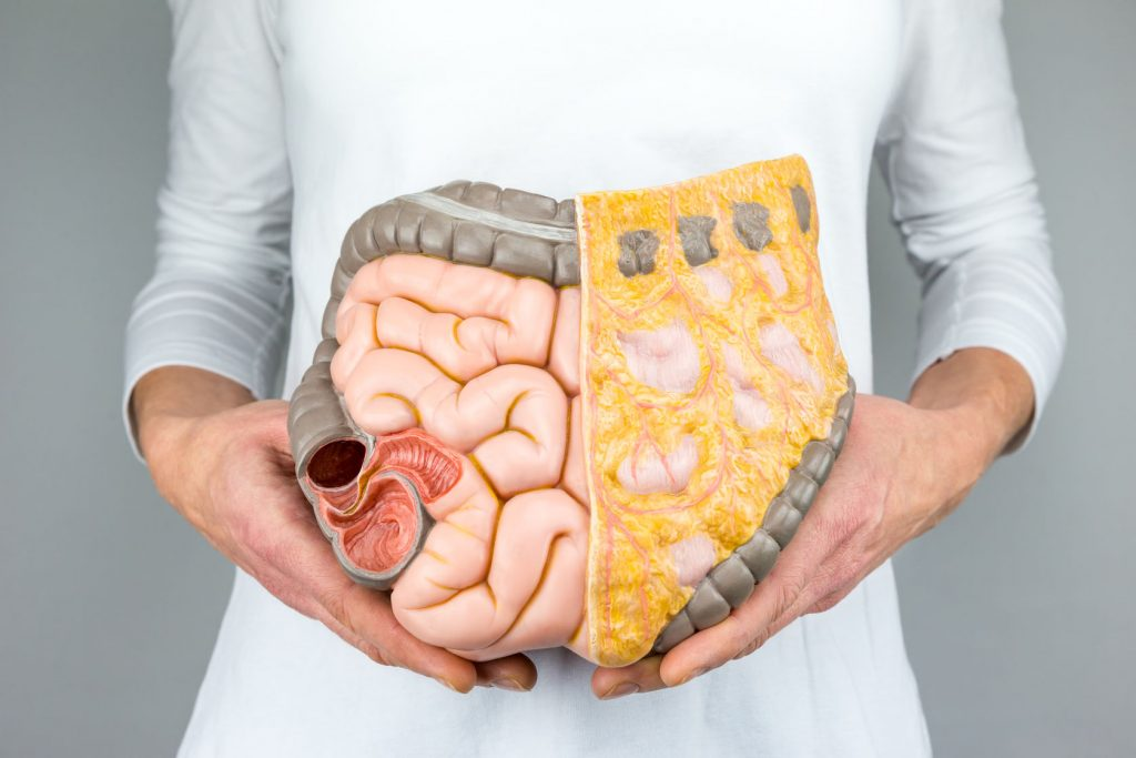 colon cleanse | Probiotic America