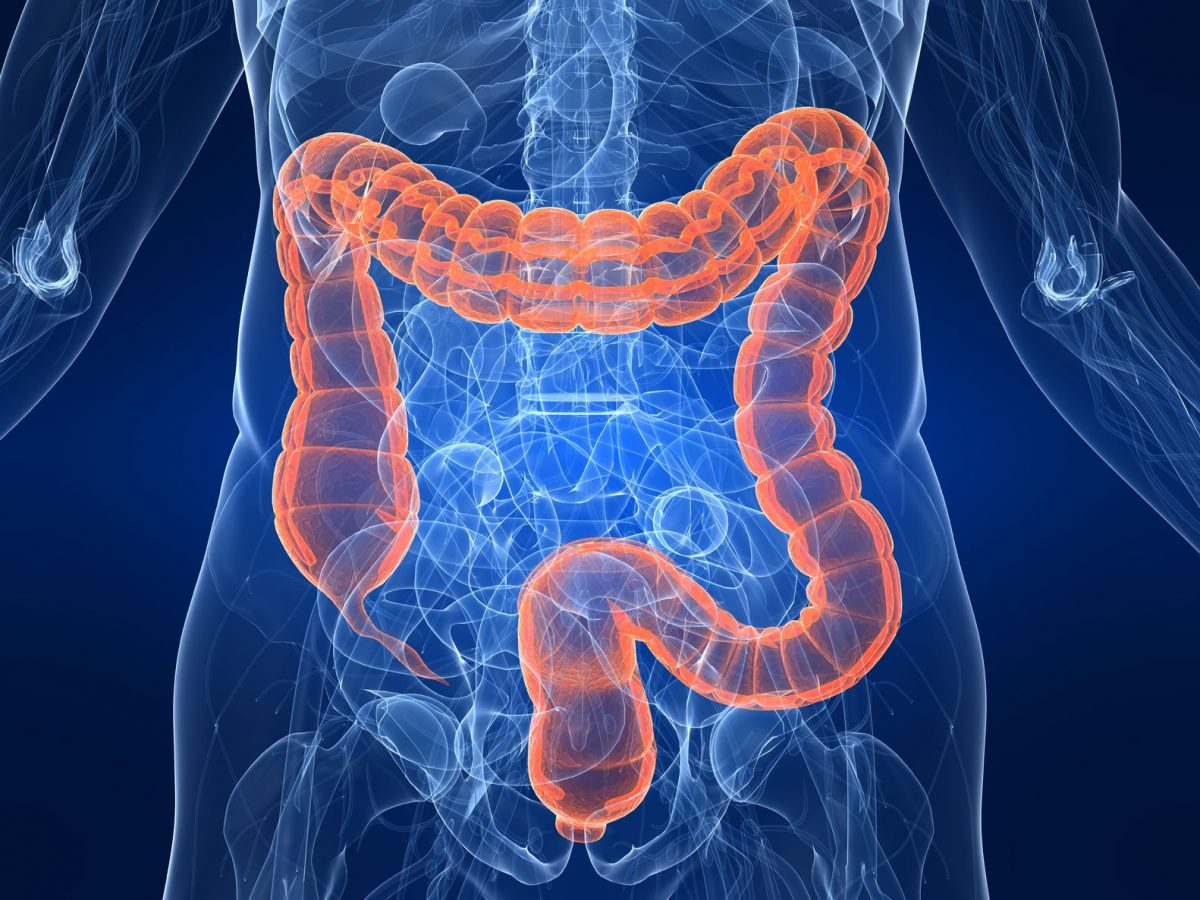 Colon Cleanse: How Do They Work And Are They Helpful?