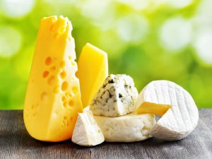 Cheese and Gut Health | Probiotic America