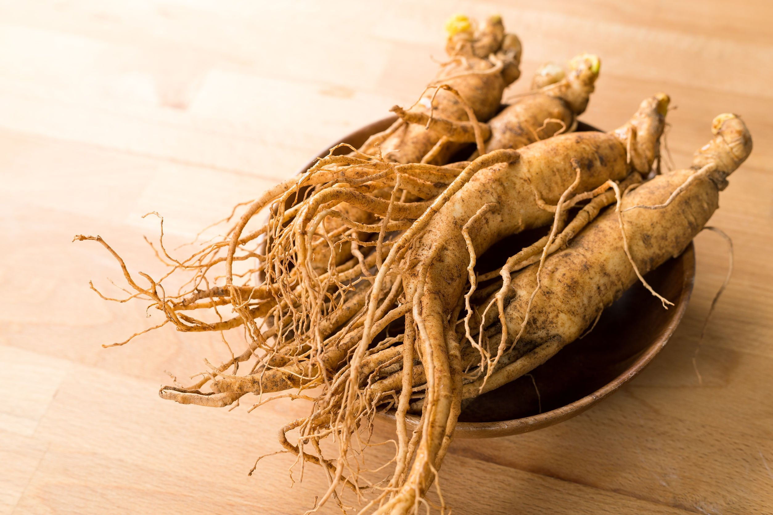 Ginseng For Weight Loss | Probiotic America